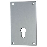 Union 5063 Push Plate 76mm Euro